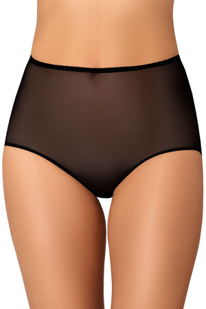 Teyli women's sheer mesh high waist briefs 306