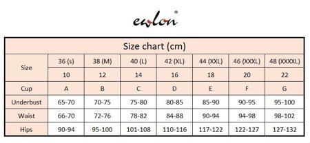 Ewlon Dakota II elegant stylish one piece swimwear suit