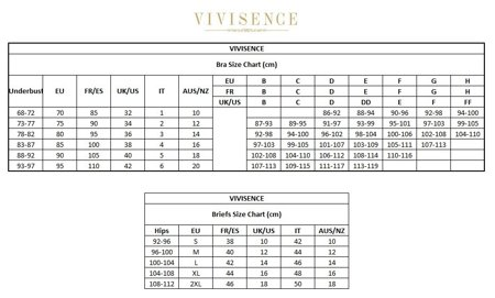 Vivisence Olivia 1005 women's panties briefs mesh embroidery pattern